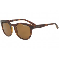 Arnette Cut Back Polarized