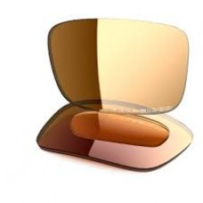 Oakley Crankcase Bronze Polarized